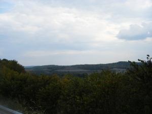 Menefee County Beauty