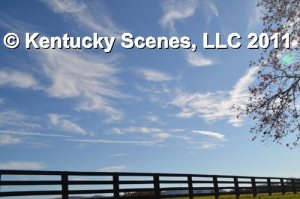 Kentucky Scenery